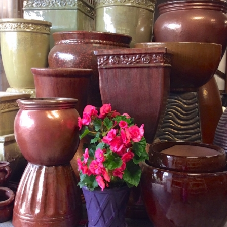 Earth-Tone-pots-with-Evie-Pink-Begonia-in-foreground