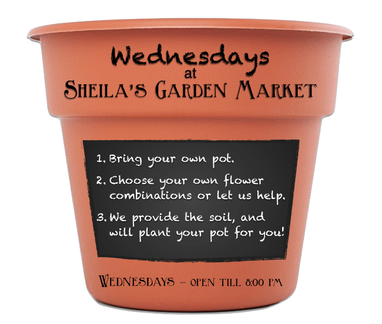 Wednesdays at Sheila's Garden Market. Open till 8 pm. Bring your own pot and we will plant it for you!
