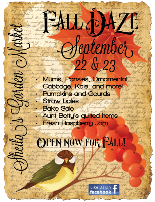 Fall Daze 2017 are September 22 & 23. Mums, Pansies, Ornamental Cabbage, Kale, and more! Pumpkins and Gourds Straw bales Bake Sale Aunt Betty's quilted items Fresh Raspberry Jam. Open now for Fall!
